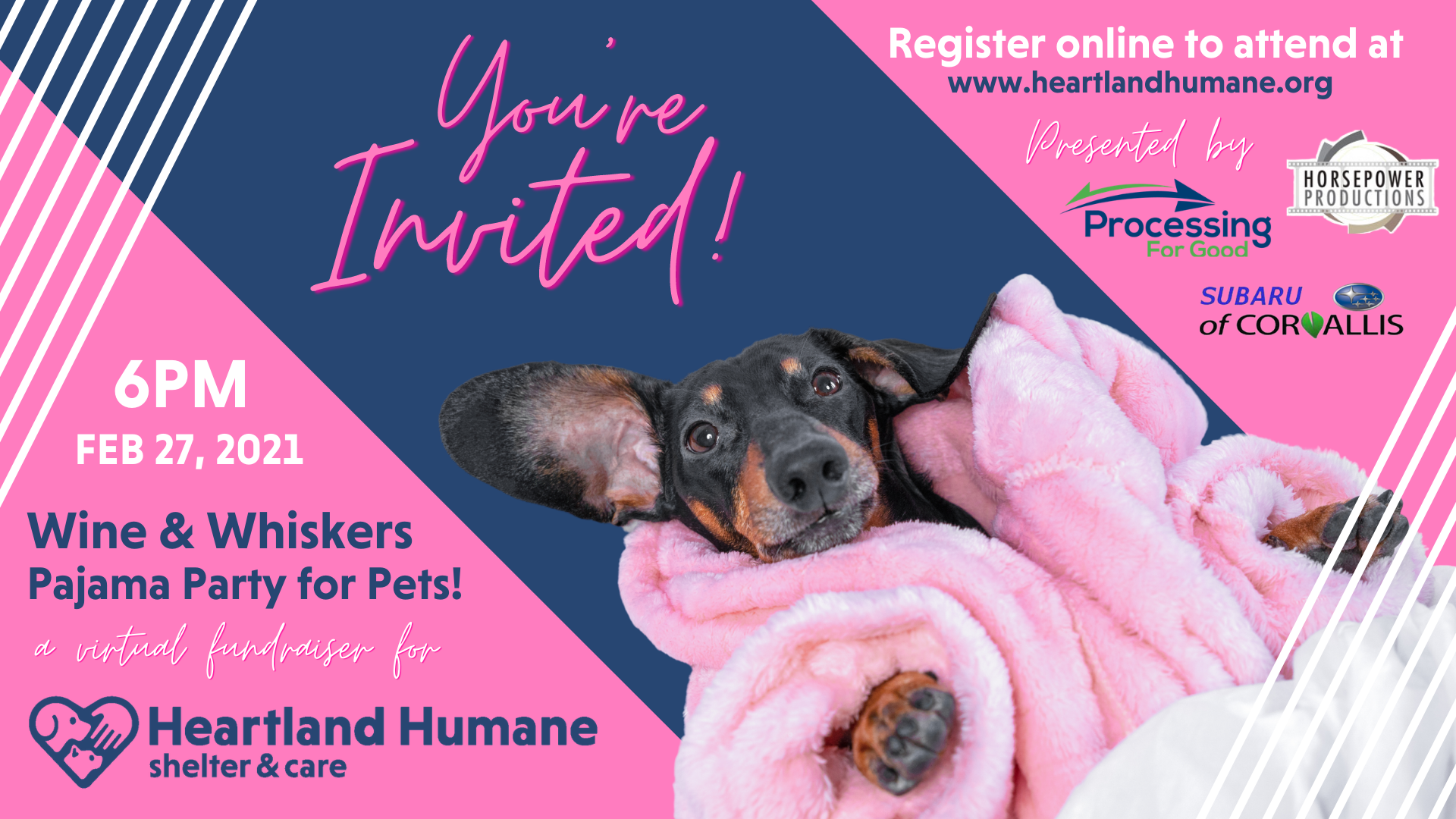 Link to Heartland Humane shelter & care